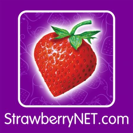 Cupom de desconto strawberrynet