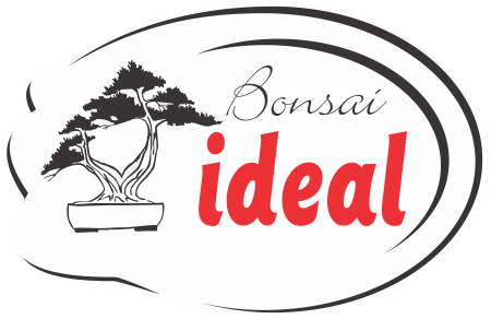 Ideal Bonsai
